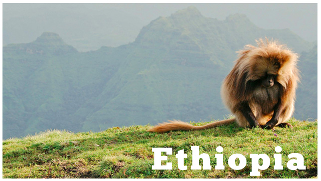 ethiopia2